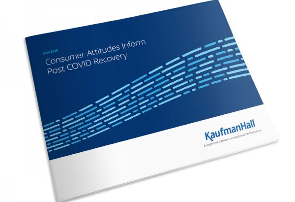 Consumer Attitudes Inform Post-COVID Recovery ebook thumbnail